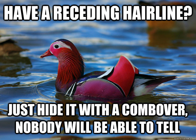 Have a receding hairline? Just hide it with a combover, nobody will be able to tell - Have a receding hairline? Just hide it with a combover, nobody will be able to tell  Malicious Fashion Advice Mallard