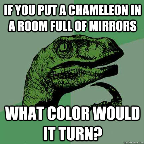 If you put a chameleon in a room full of mirrors what color would it turn? - If you put a chameleon in a room full of mirrors what color would it turn?  Misc