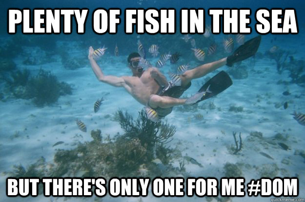 Plenty of fish in the sea but there 39 s only one for me dom for Plenty of fish meme