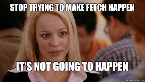 stop trying to make fetch happen It's not going to happen - stop trying to make fetch happen It's not going to happen  Misc