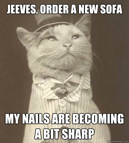 Jeeves Order A New Sofa My Nails Are Becoming A Bit Sharp