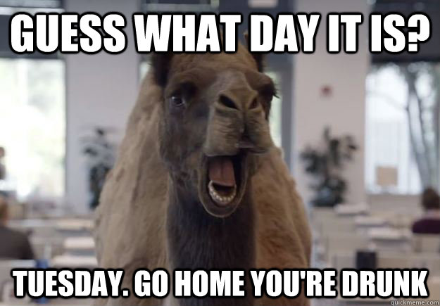 Guess what day it is? Tuesday. Go home you're drunk  Geico Camel Hump Day
