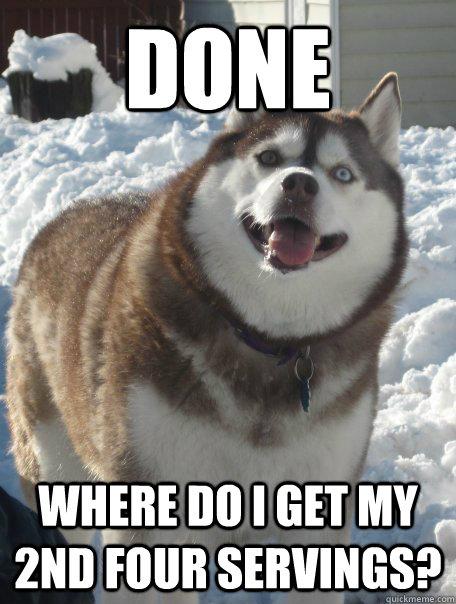 annoyed husky meme - photo #7