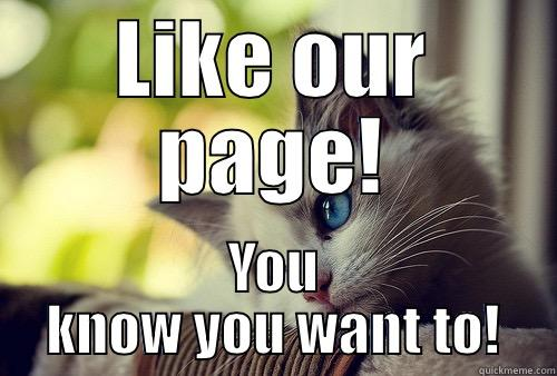 LIKE OUR PAGE! YOU KNOW YOU WANT TO! First World Problems Cat