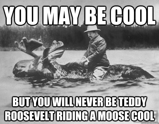 You may be cool But you will never be teddy roosevelt riding a moose cool  Teddy roosevelt on a moose