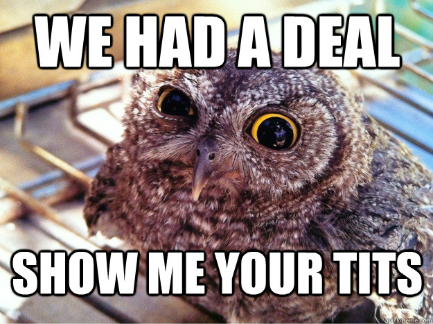 We had a deal Show me your tits - We had a deal Show me your tits  Skeptical Owl