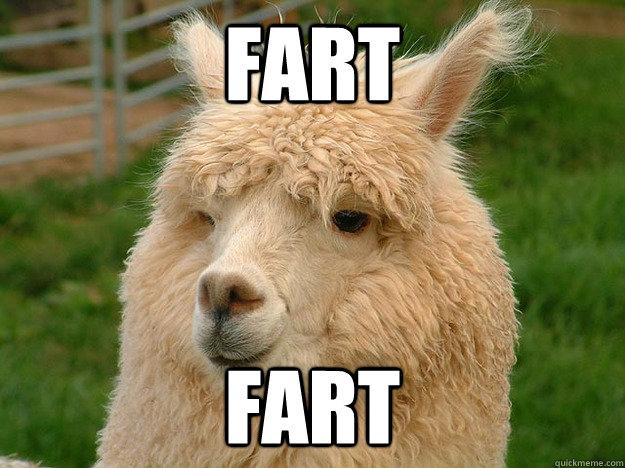 009baa0eeb91df179e0a73d4455f0c7f474140b1d2e19895ff8ab806d073d2e9 memorial day goat memes quickmeme,Funny Memorial Day Memes