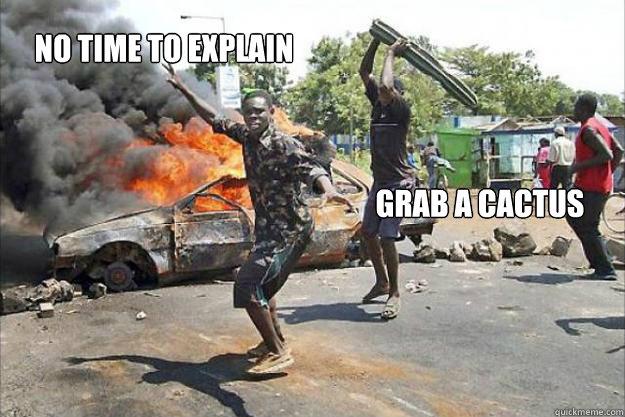 NO TIME TO EXPLAIN GRAB A CACTUS