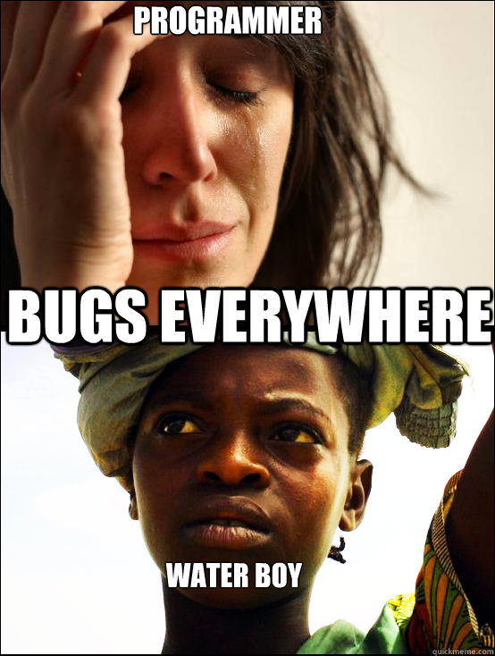 Programmer Bugs EVERYWHERE Water Boy