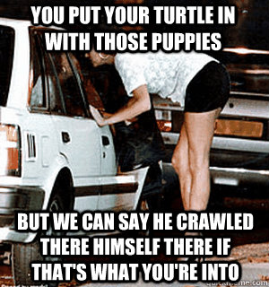 You put your turtle in with those puppies But we can say he crawled there himself there if that's what you're into - You put your turtle in with those puppies But we can say he crawled there himself there if that's what you're into  Karma Whore