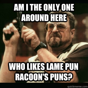 Am i the only one around here Who likes lame pun racoon's puns? - Am i the only one around here Who likes lame pun racoon's puns?  Misc