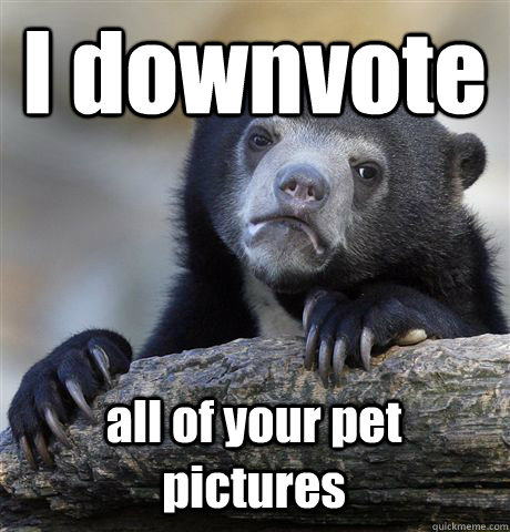 I downvote all of your pet pictures - I downvote all of your pet pictures  Confession Bear