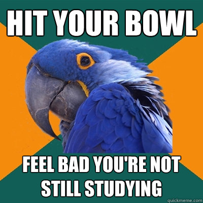 Hit your bowl Feel bad you're not still studying - Hit your bowl Feel bad you're not still studying  Paranoid Parrot