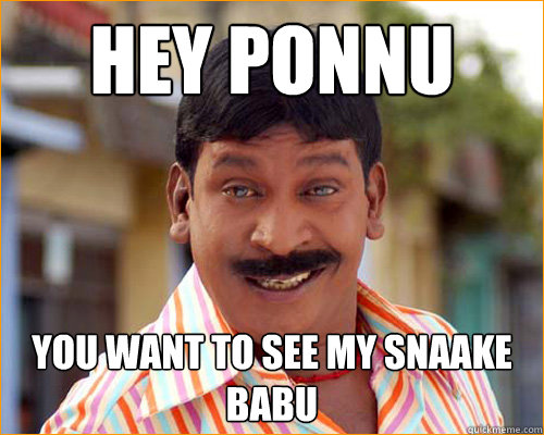 hey ponnu you want to see my snaake babu  vadivelu meme