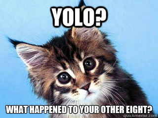 YOLO? What happened to your other eight?