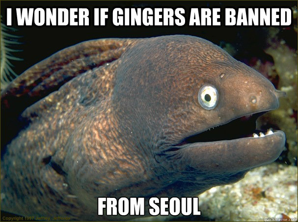 I wonder if gingers are banned from Seoul - I wonder if gingers are banned from Seoul  Misc