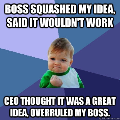 Boss squashed my idea, said it wouldn't work CEO thought it was a great idea, overruled my boss. - Boss squashed my idea, said it wouldn't work CEO thought it was a great idea, overruled my boss.  Success Kid