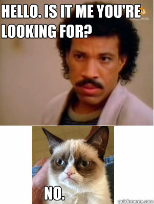 Hello Is It Me Youre Looking For No Grumpy Cat And Lionel