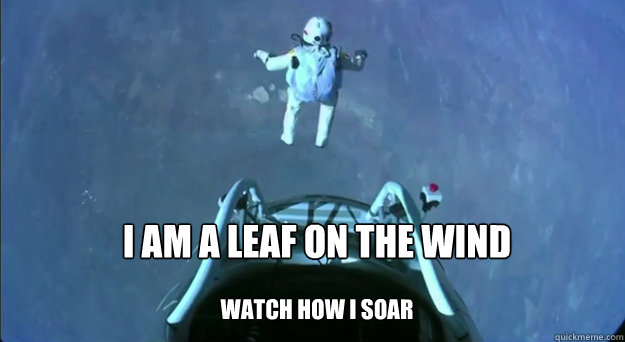 I am a leaf on the wind  watch how I soar