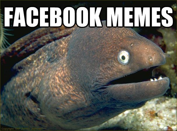 facebook memes  - facebook memes   Bad Joke Eel