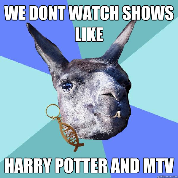 we dont watch shows like harry potter and mtv - we dont watch shows like harry potter and mtv  Christian Mama Llama