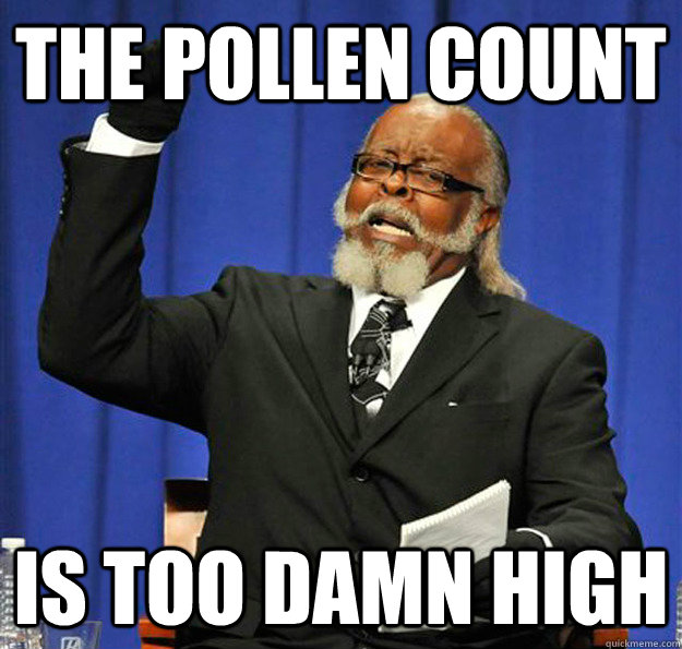 The Pollen Count Is too damn high - The Pollen Count Is too damn high  Jimmy McMillan