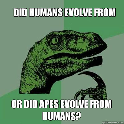 Did humans evolve from apes or did apes evolve from humans?