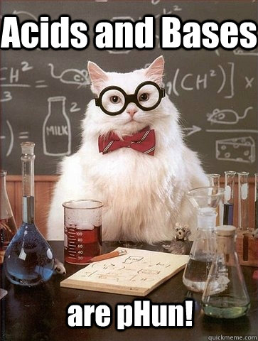 Image result for chemistry cat acids and bases