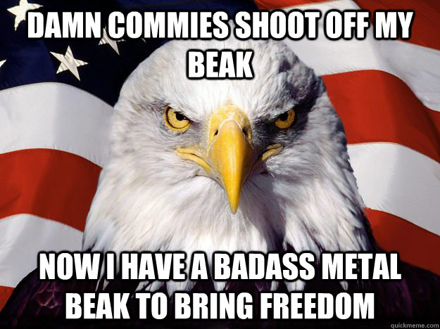 Damn Commies shoot off my beak Now i have a badass metal beak to bring freedom