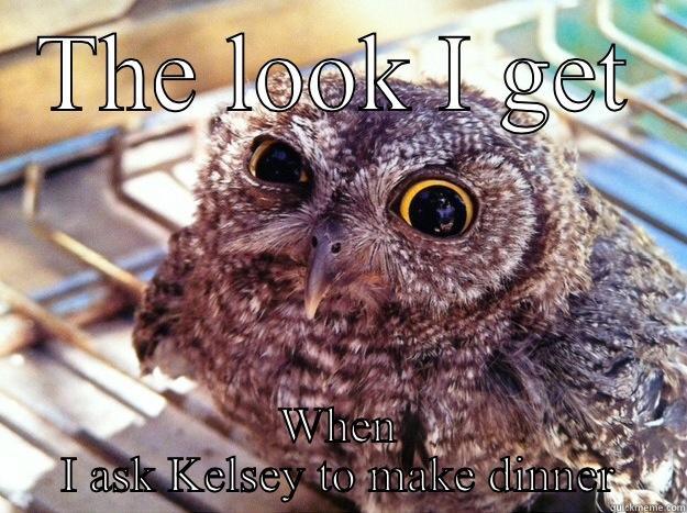 THE LOOK I GET WHEN I ASK KELSEY TO MAKE DINNER Skeptical Owl