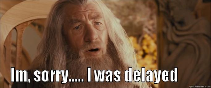 gandalf delayed!!!! -  IM, SORRY..... I WAS DELAYED        Misc
