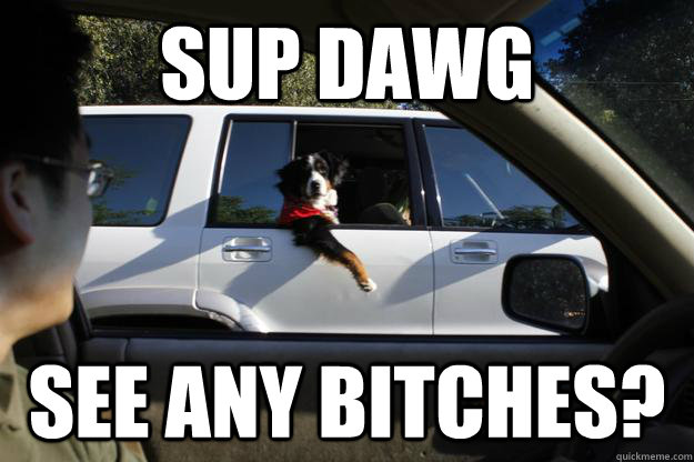 Sup Dawg See any bitches? - Sup Dawg See any bitches?  SupDawg