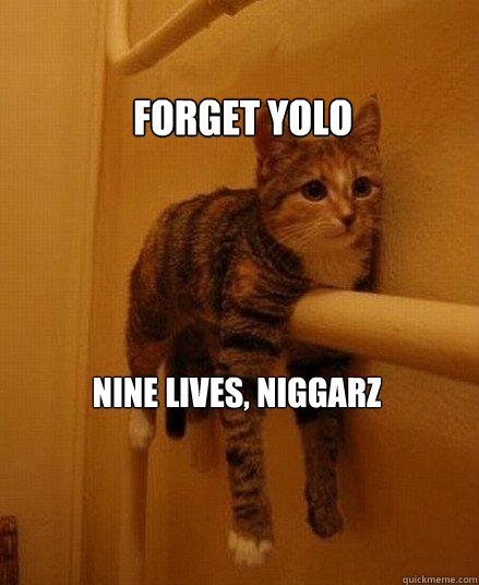 Forget yolo nine lives, niggarz - Forget yolo nine lives, niggarz  Monorail Cat