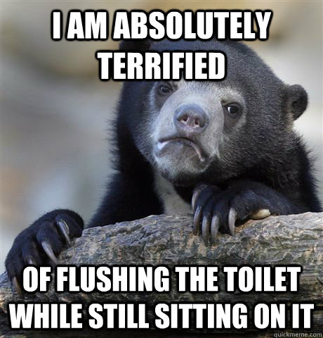 i am absolutely terrified of flushing the toilet while still sitting on it  - i am absolutely terrified of flushing the toilet while still sitting on it   confessionbear