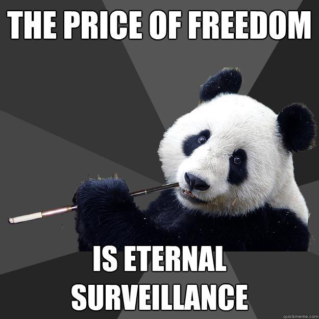 THE PRICE OF FREEDOM IS ETERNAL SURVEILLANCE