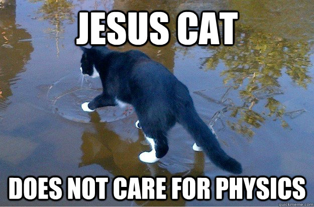 Jesus cat  Does not care for physics