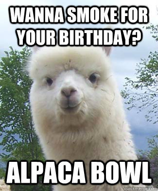 Wanna smoke for your birthday? Alpaca bowl - Wanna smoke for your birthday? Alpaca bowl  Alpaca-pun Alpaca