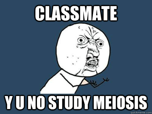 my body is doing meiosis - if you know what i mean - quickmeme