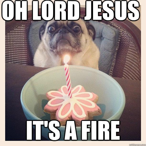 Oh Lord Jesus it's a fire - Oh Lord Jesus it's a fire  ermahgerd fire pug