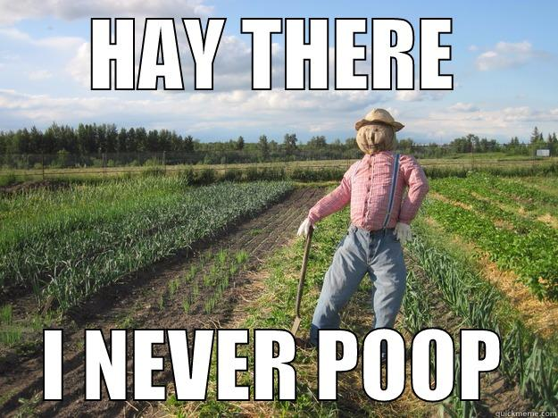 hay there, I never poop - HAY THERE I NEVER POOP Scarecrow