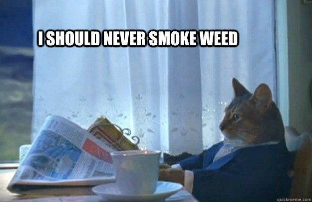 I should never smoke weed - I should never smoke weed  Sophisticated Cat