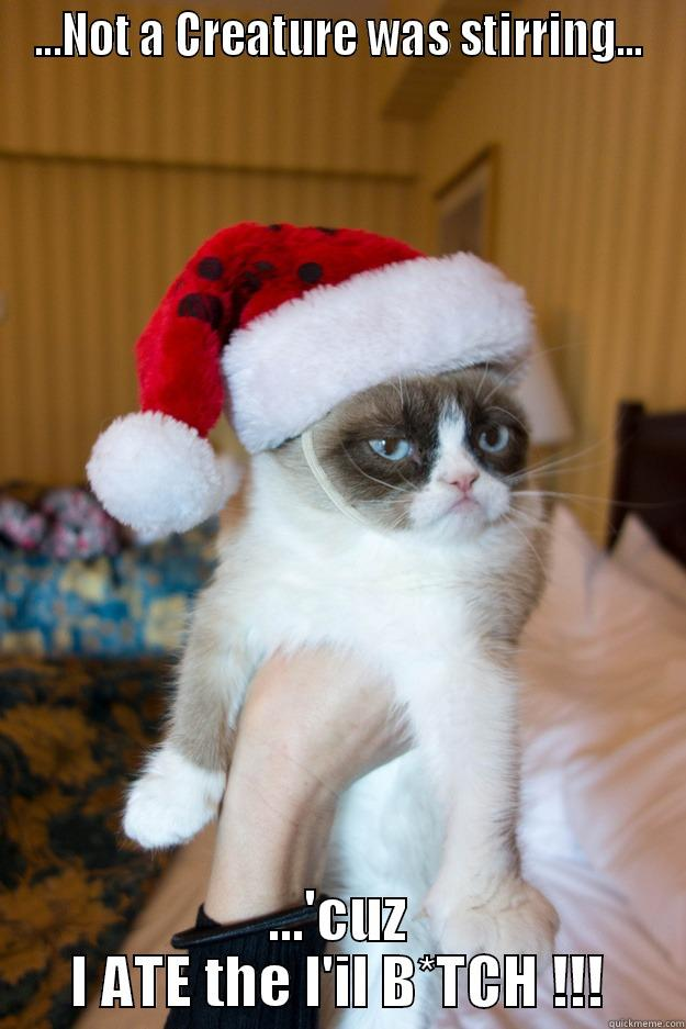 The Fright Before Christmas - ...NOT A CREATURE WAS STIRRING... ...'CUZ I ATE THE L'IL B*TCH !!! Grumpy xmas