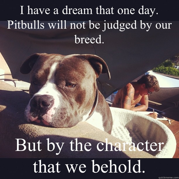 I have a dream that one day. Pitbulls will not be judged by our breed. But by the character that we behold.  Neglected Pitbull