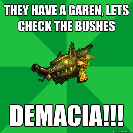 they have a garen, lets check the bushes demacia!!!  Bad LoL Player