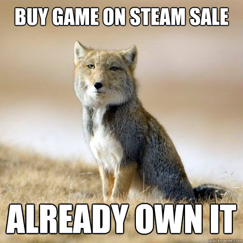 Buy game on Steam Sale Already Own it
