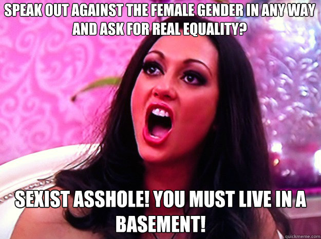 Speak out against the female gender in any way and ask for real equality? Sexist asshole! you must live in a basement! - Speak out against the female gender in any way and ask for real equality? Sexist asshole! you must live in a basement!  Feminist Nazi