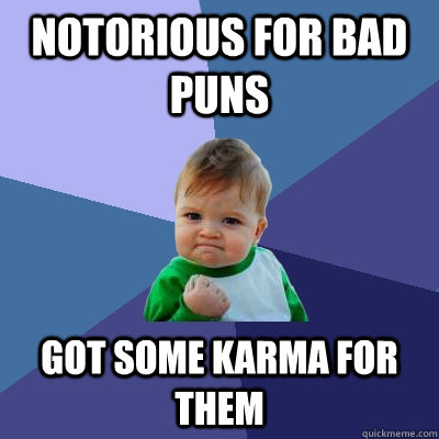 notorious for bad puns got some karma for them - notorious for bad puns got some karma for them  Success Kid