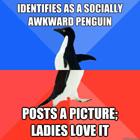 Identifies as a socially awkward penguin posts a picture; ladies love it - Identifies as a socially awkward penguin posts a picture; ladies love it  Socially Awkward Awesome Penguin