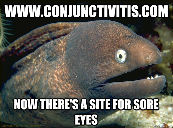 www.conjunctivitis.com Now there's a site for sore eyes  Bad Joke Eel