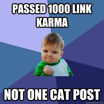 Passed 1000 Link Karma Not one cat post - Passed 1000 Link Karma Not one cat post  Success Kid